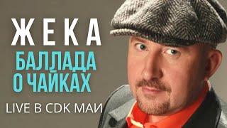 Жека (Евгений Григорьев) - Баллада о чайках - Live в CDK МАИ