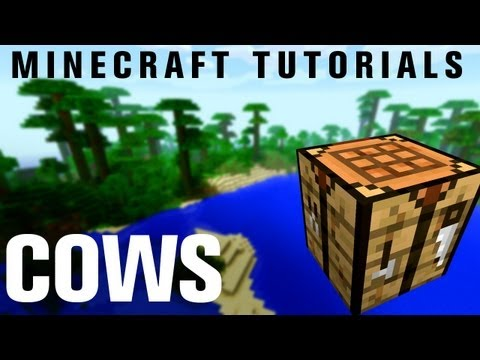 Minecraft Tutorials: How to Attract Cows
