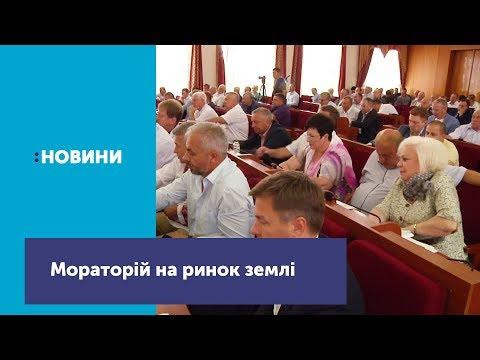Житомирские депутаты приняли обращение к Президенту и ВР Украины