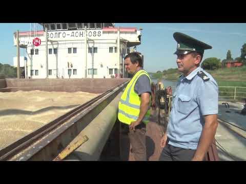 В Ростовской области Управлением Россельхознадзора осуществлен контроль партий зерна и продуктов его переработки, предназначенных на экспорт