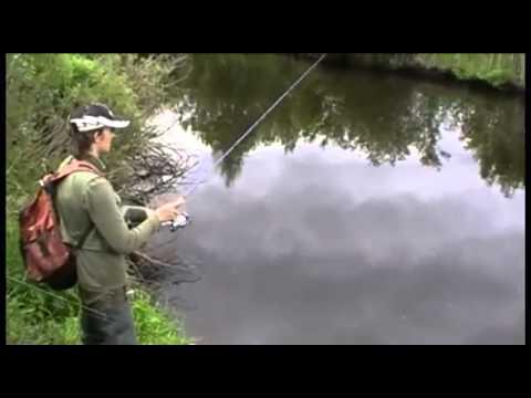 ловля щуки на узких речках