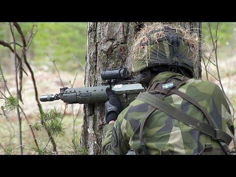 Γκότλαντ: Το σουηδικό νησί που ετοιμάζεται για πόλεμο