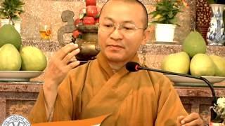 Kinh Trung Bộ 002: Bảy cách dứt trừ khổ đau - TT. Thích Nhật Từ