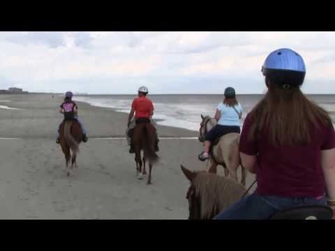 Riders point of view, Horseback riding on the beach at Amelia Island, Ferndandina Beach Florida