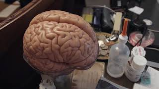 Video El cerebro de Rodolfo Llinás MP3, 3GP, MP4, WEBM, AVI, FLV Desember 2018