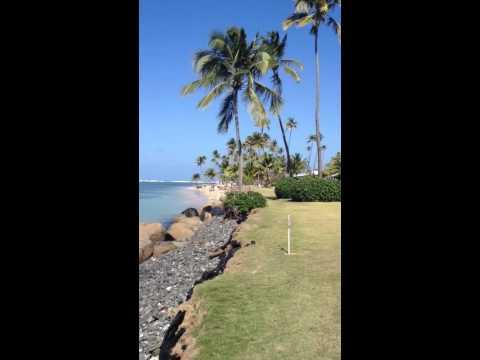 Beach at Sol Melia Hotel in Coco Beach, Rio Grande, Puerto