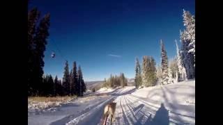 Dog sledding Sun Dog style!