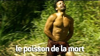 Video le poisson de la mort : 1000 morts insolites MP3, 3GP, MP4, WEBM, AVI, FLV Juni 2017