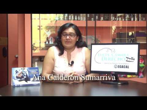 Programa 10 - Modificaciones en torno a la Inhabilitación - Luces Cámara Derecho - EGACAL