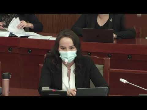 Ц.Мөнхцэцэг: Үндсэн хуулийн эсрэг байгаа Ерөнхийлөгчийн байр суурьтай УИХ эвлэрэх боломжгүй