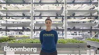 The High-Tech Vertical Farmer