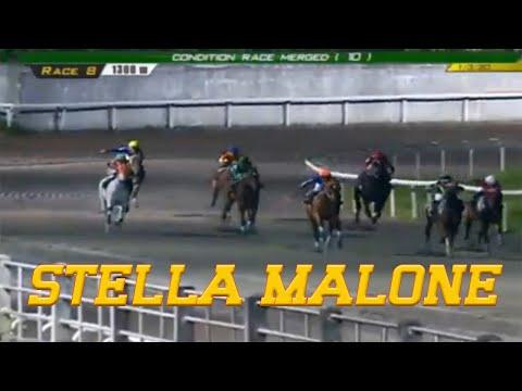STELLA MALONE - PRCI Race 8 - January 03, 2020 - BAYANG KARERISTA Horse Racing - Race Replay