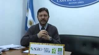 Roberto Shunk