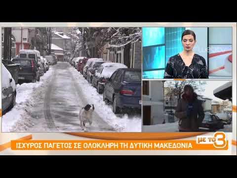 Παγετός και κλειστά σχολεία σε Φλώρινα και Άργος Ορεστικό| 08/01/2019 | ΕΡΤ