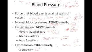 Blood Pressure Overview