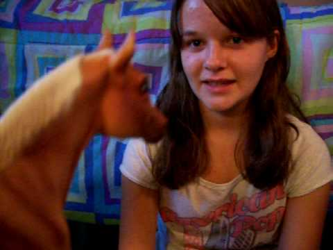 Days With Sandy! (My Breyer Horse series/show/movie) Interviewing a Friend