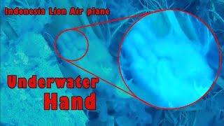 Video Raw: Indonesia Lion Air plane underwater 🎥 unseen videos 2 MP3, 3GP, MP4, WEBM, AVI, FLV November 2018
