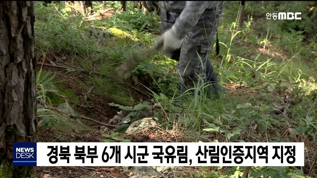 경북북부 6개시군 산림인증 취득