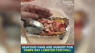 Seafood fans are hungry for Tampa Bay Lobster Festival | Taste and See Tampa Bay