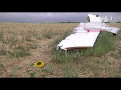 Hà Lan tái khẳng định phải điều tra độc lập vụ rơi máy bay MH17