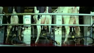 Video GATTACA - SMRT JAKO JEDINÝ ÚČEL ŽIVOTA