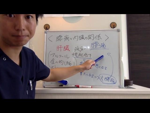 肝臓と腰痛の関係性