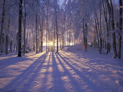 Winter solstice It's the shortest day of the year – Winter solstice 2014 shortest day