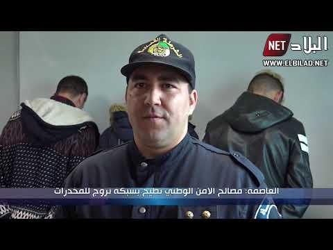 العاصمة : مصالح الأمن الوطني تطيح بشبكة تروج للمخدرات