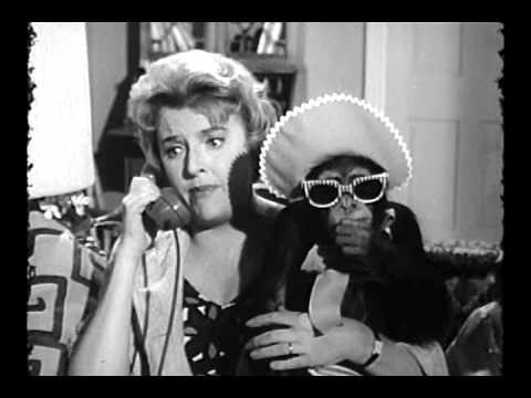 Hathaways,The (Intro) S1 (1961)