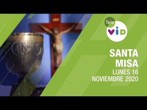 Misa de hoy ⛪ Lunes 16 de Noviembre de 2020, Padre Luis Vivó - Tele VID