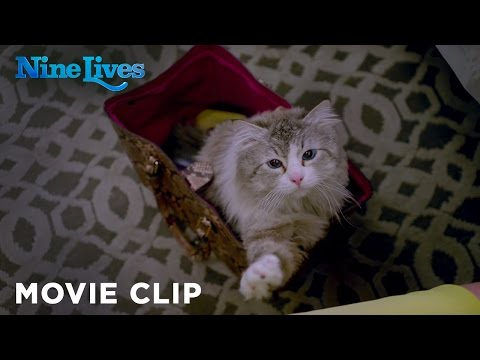 Nine Lives (2016) (Clip 'Who Needs a Litter Box?')