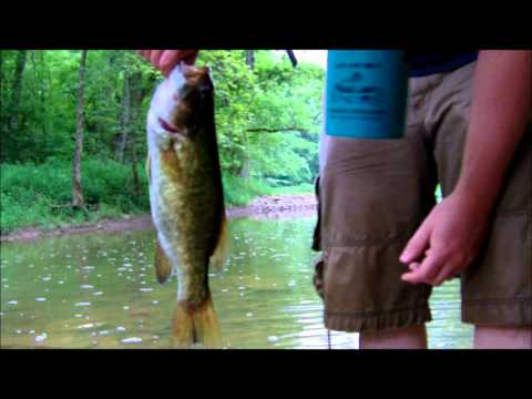 creek bass fishing