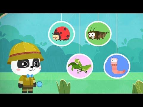 Trò chơi vui nhộn - Tìm hiểu về côn trùng cùng Gấu Trúc Kiki