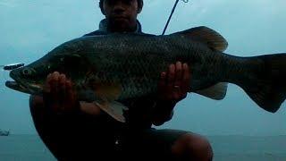 Download Video fun fishing 2, casting kerapu kakap kedokan pantai Semarang MP3 3GP MP4