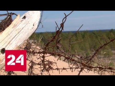 Экспедиция нашла на острове Большой Тютерс бункер времен войны - Россия 24 - DomaVideo.Ru