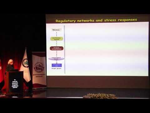Dr. Laszlo M. SZABADOS - 19.UKUBK - Açılış Konuşması