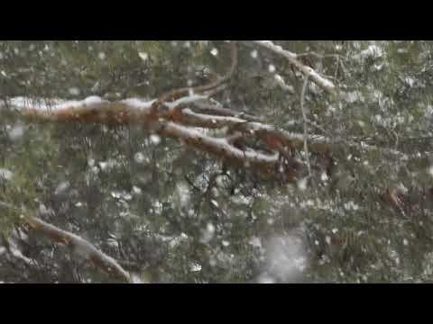 снежинка на окне