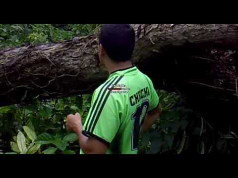 Caza de tepezcuinte en San Carlos Costa Rica