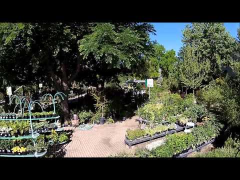 Take a tour of Greenhouse Garden Center
