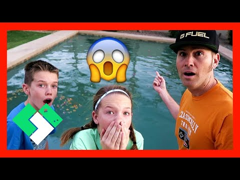 😱 WHAT HAPPENED TO OUR SWIMMING POOL??!! (Day 1854) | Clintus.tv