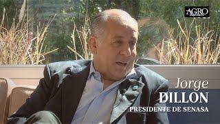 Jorge Dillon - Presidente de Senasa