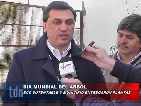ECOSUSTENTABLE Día Del Arbol_1