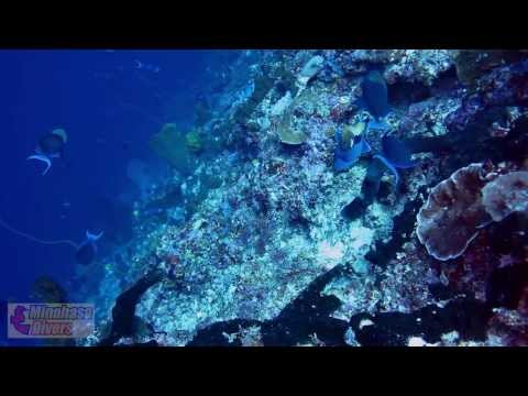The North Sulawesi Experience [HD1080]