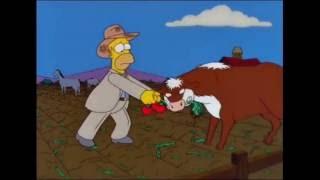 Homero el Granjero parte 3 Los Simpson