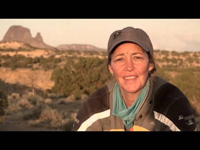New Mexico BDR