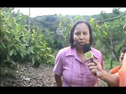 TV LÍDER NEWS   Homicídio no Tourinho em Laje