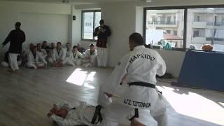 Α.Γ.Σ Τζιτζιφιών - Korean Sinmoo Hapkido Ελλάδος