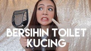 Video BERSIHIN TOILET KUCING ??   MY CATS DIARY #4 MP3, 3GP, MP4, WEBM, AVI, FLV Oktober 2017
