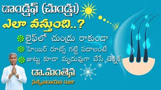 Dandruff Remedies Recommended by Experts – Hair Oil   Dr Manthena Satyanarayana Raju Videos