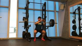 Frankenstein Squat from pins x 275b x 3 reps